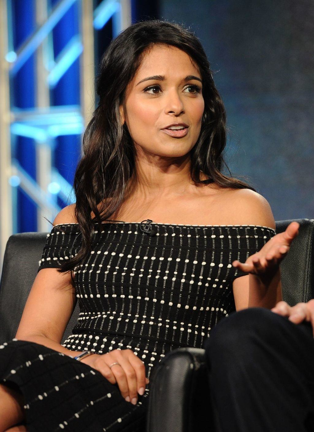Dilshad Vadsaria at Fox TCA panel.
